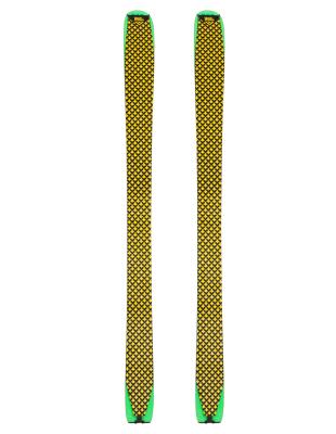 Pellis Hybrid Solis