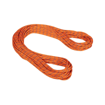 Acquisto 9.0 Alpine Sender Dry Rope Dry Standard.Ice-Sunrise