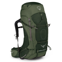 Achat Aether AG  60 Adirondack Green