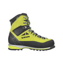 Buy Alpine Expert GTX lime/black