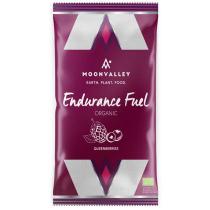 Acquisto Endurance Fuel 45g - Boisson Energétique Myrtilles