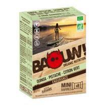 Achat Etuis 8 mini-barres bio 10g Quinoa-Pistache-Citron Vert