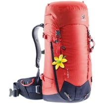 Compra Guide 32+ SL Rouge Chili/Navy