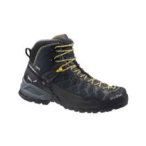 Buy Ms Alp Trainer Mid GTX Carbon/Ringlo