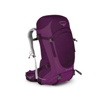 Achat Sirrus 36 Purple