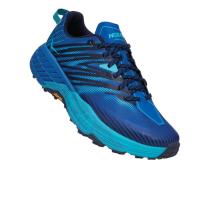 Buy Speedgoat 4 Turkish Sea / Scuba Blue