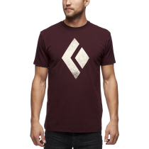Buy SS Chalked Up Tee M Port