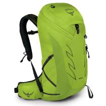 Achat Talon 26 Limon Green