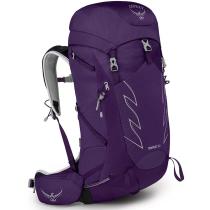Buy Tempest 30 Violac Purple