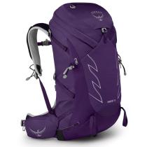 Buy Tempest 34 Violac Purple