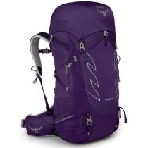 Buy Tempest 40 Violac Purple