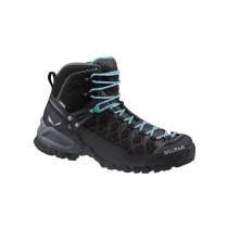 Buy WS Alp Trainer Mid GTX Black Out/Agata