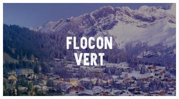 Mountain Riders Flocon Vert