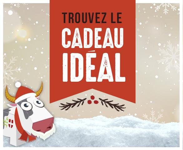Découvrez la boutique de Noël Snowleader